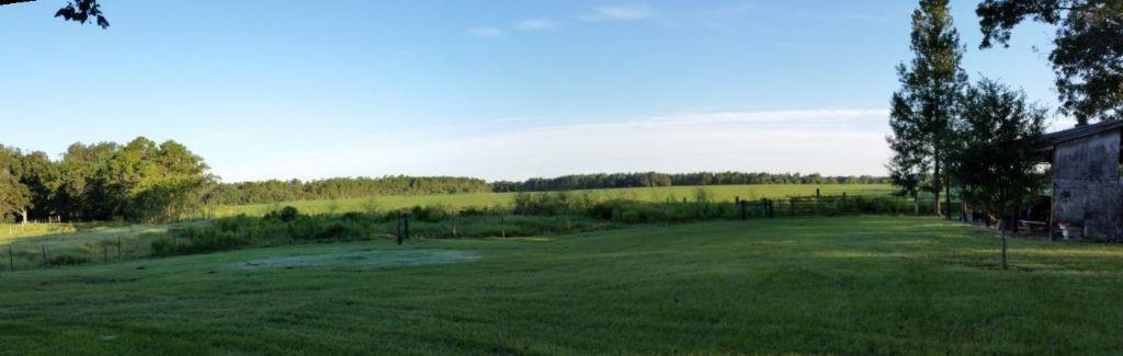 Backyard field pano at sunrise